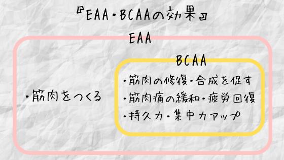 EAA・BCAAの効果